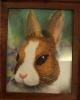 Nathan the Rabbit - Emily